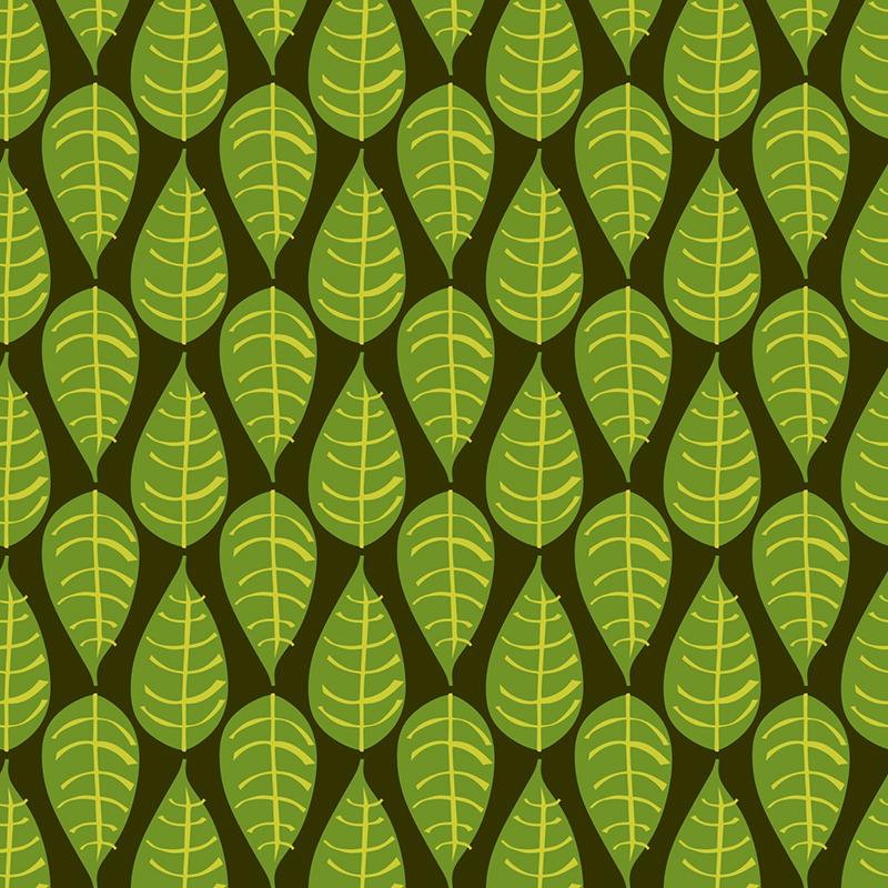 wet season leaf