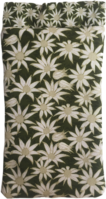 flannel flower (mallee)
