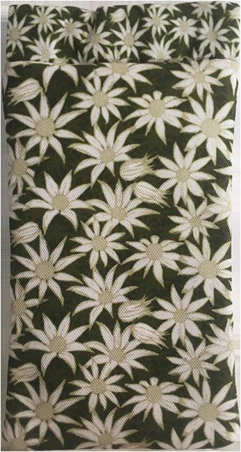 flannel flower (mallee)