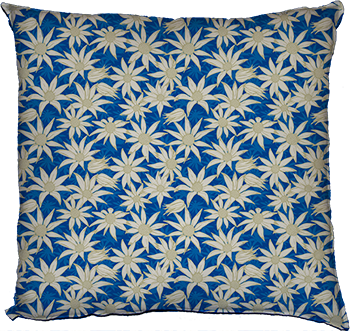 flannel flowers (blue)