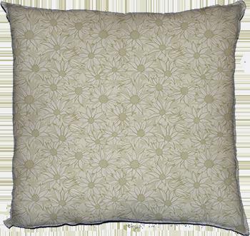 flannel flowers (cream)