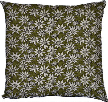 flannel flowers (olive)