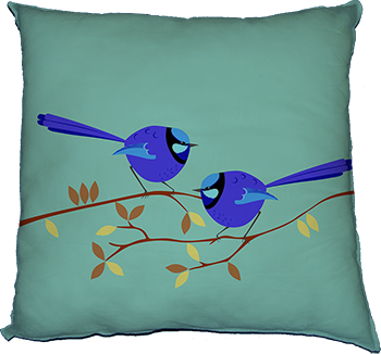 splendid fairy wren feature
